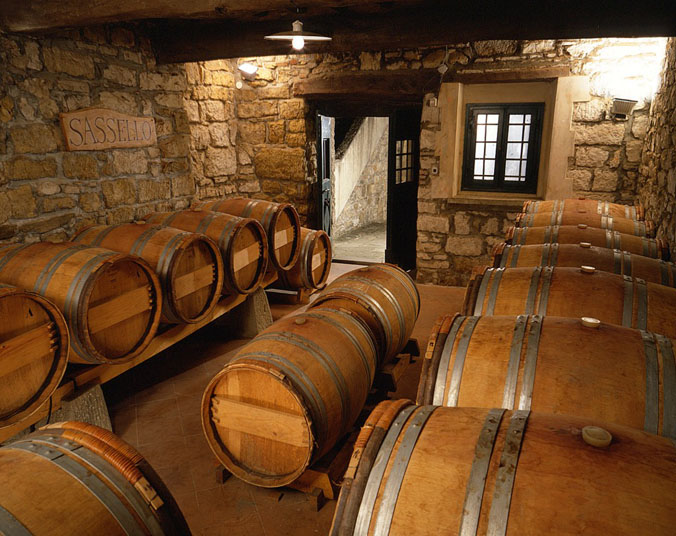 Wine Tours in Verrazzano castle wine cellars
