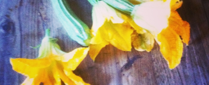 Fried courgette flowers from Olive's kitchen