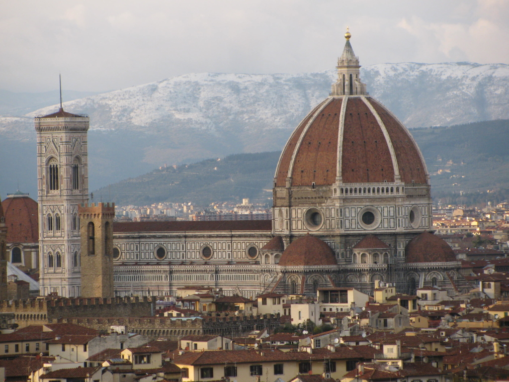 Florence Dome: Olive In Tuscany