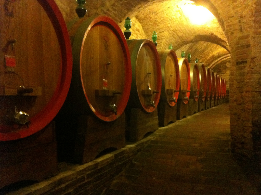 Montepulciano Underground Wine Cellars Olive In Tuscany
